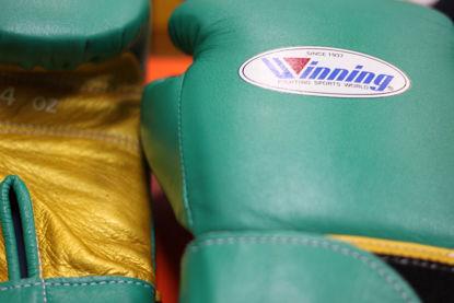 Изображение Тренировочные перчатки (на липучке) Winning® зеленый/золотой 14 oz